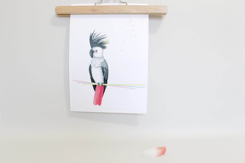 Affiche perroquet Miss-etc
