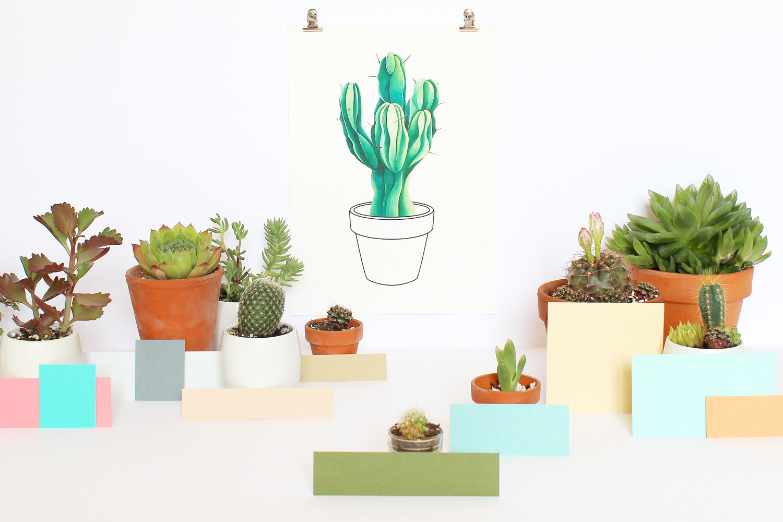 cactusintro
